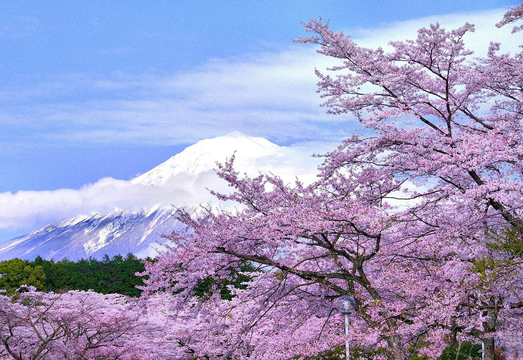 Flickr photo of Mt Fuji by Hide99